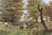 Cows By Bridge Fine-Art Print