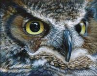 Dark Owl Fine-Art Print