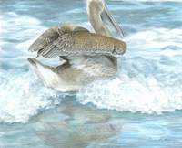 Pelican Surf Fine-Art Print