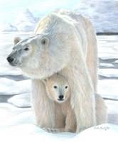 Polar Love Fine-Art Print