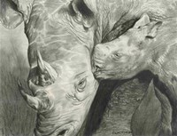 Rhino Love Fine-Art Print