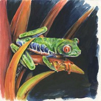 Costa Rican Leaping Frog Fine-Art Print
