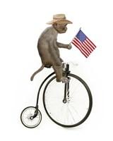 Monkeys Riding Bikes #3 Framed Print