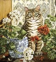 Winter's Garden Fine-Art Print