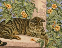 Caribbean Cat Fine-Art Print