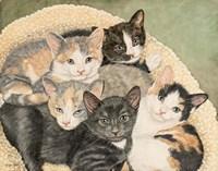 Gracie's Kittens Fine-Art Print