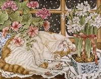 Long Winter's Nap Fine-Art Print