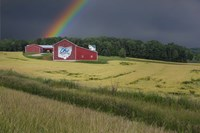 Ohio Farm Rainbow Fine-Art Print