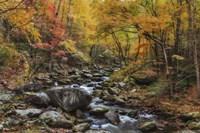 Tremont Stream Watercolor Fine-Art Print