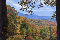 Window To The Smoky Mountains Fine-Art Print