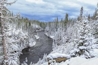 Yellowstone Winter In Fall Fine-Art Print