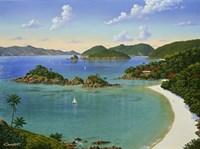 Trunk Bay - Virgin Islands Fine-Art Print