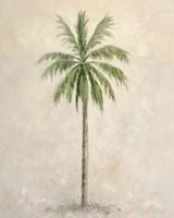 Palm Tree 1 Fine-Art Print