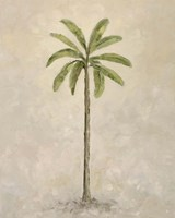 Palm Tree 2 Fine-Art Print