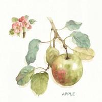 Orchard Bloom I Fine-Art Print