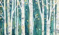 Birches in Spring Fine-Art Print