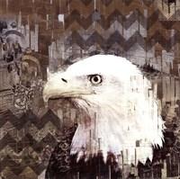 Call Of The Eagle Fine-Art Print