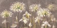 Spring Blossoms Neutral II Fine-Art Print