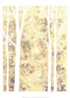 Simple State II Fine-Art Print