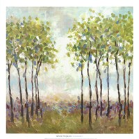 Foxwood I Fine-Art Print