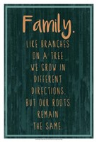 Spice Family Rules III Fine-Art Print