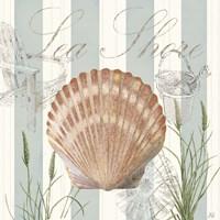 Seashells by the Seashore II Fine-Art Print