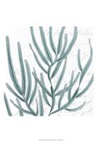 Aqua Marine I Fine-Art Print
