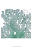 Aqua Marine III Fine-Art Print