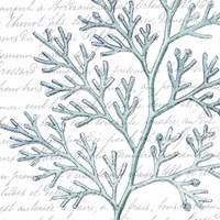 Aqua Marine IX Fine-Art Print
