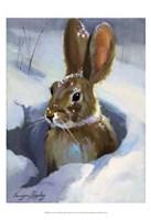 Snow Bunny Fine-Art Print