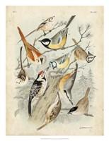 Gathering of Birds II Fine-Art Print