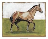 Equestrian Studies III Fine-Art Print