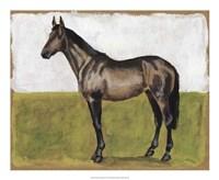 Equestrian Studies IV Fine-Art Print