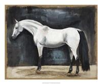 Equestrian Studies VI Fine-Art Print