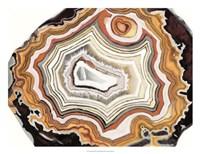 Agate Studies IV Fine-Art Print