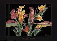 Scene Of Colour Fine-Art Print
