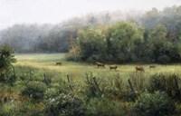 Vermont Pasture Fine-Art Print
