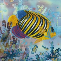 Regal Angel Fish Fine-Art Print