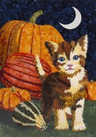 Calico Kitten & Pumpkins Fine-Art Print