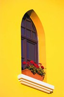Bright Yellow Wall with Red Flowers on Sill Fine-Art Print