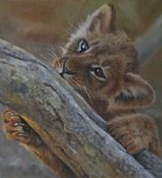 Play Lion Cub Fine-Art Print