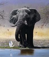 Elephant, Egret And Carmines Fine-Art Print