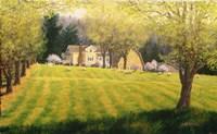 Spring Pastures Fine-Art Print