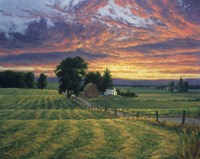 Farm Sunset Fine-Art Print