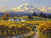 Autumn Vineyards Fine-Art Print