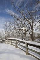 Fence in the Snow #2, Farmington Hills, Michigan 09 Fine-Art Print