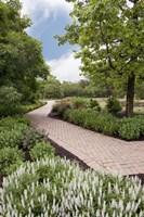 Pathway at Franklin Park, Columbus, Ohio 10 Fine-Art Print