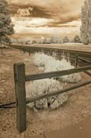 Fence & Road, Albuquerque, New Mexico 06 Fine-Art Print