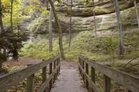 Bridge In The Canyon Fine-Art Print