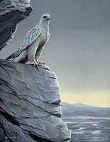 Arctic Spring Fine-Art Print